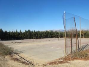 L'estat de degradació de les pistes de tenis és molt preocupant
